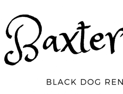 Baxter's Blog: Tracks or Tires?